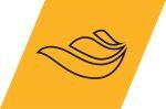 Ansys Fluids Product Suite logo